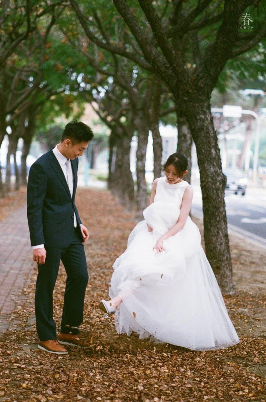CHUN / 春 / 台南東豐路木棉道